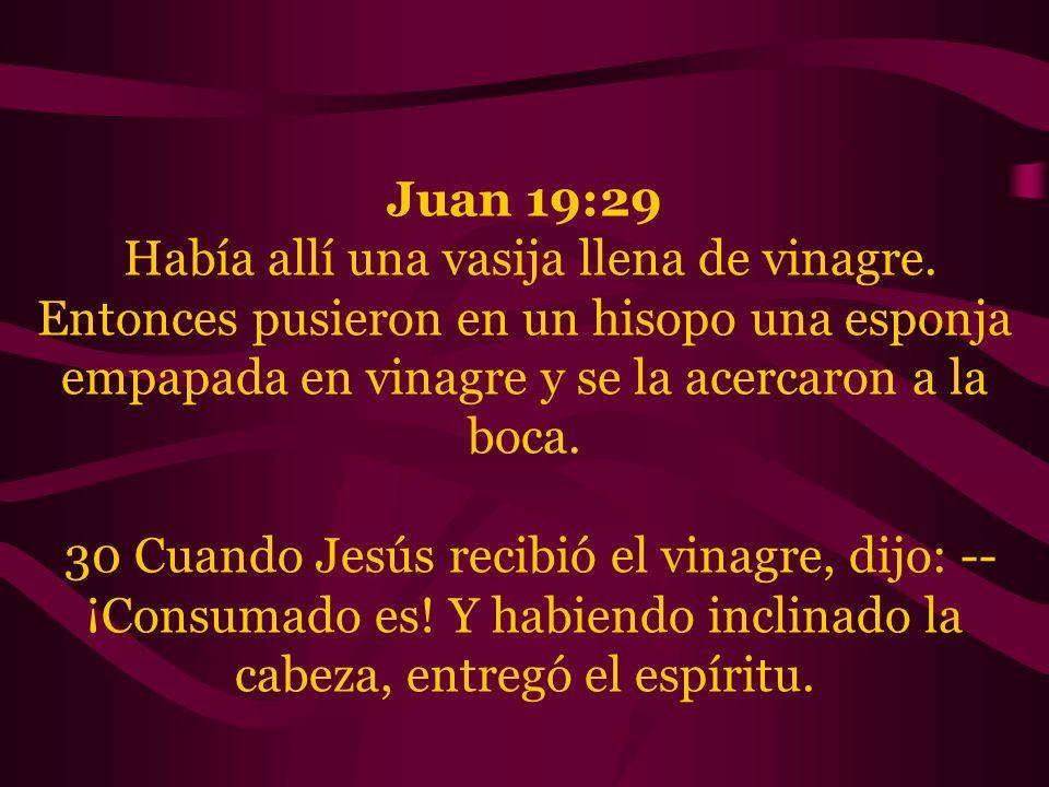 Juan 19:29 Había allí una vasija llena de vinagre. Entonces pusieron en un hisopo una esponja empapada en vinagre y se la acercaron a la boca. 30 Cuan