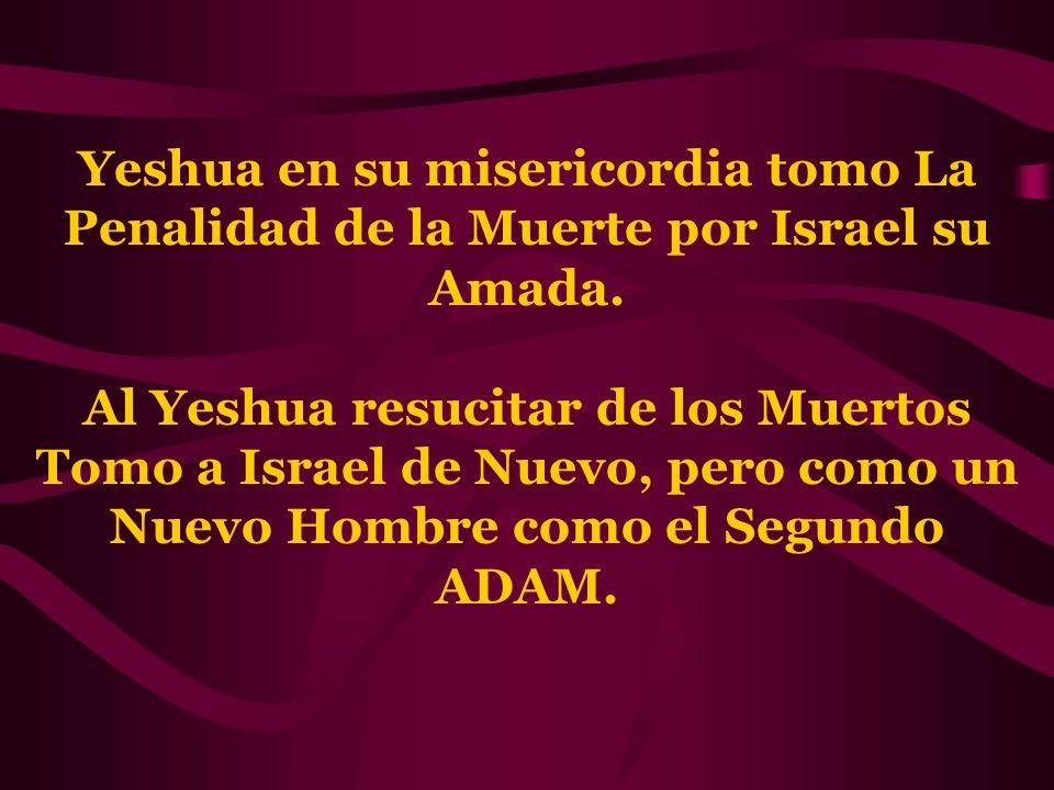 Yeshua en su misericordia tomo La Penalidad de la Muerte por Israel su Amada. Al Yeshua resucitar de los Muertos Tomo a Israel de Nuevo, pero como un