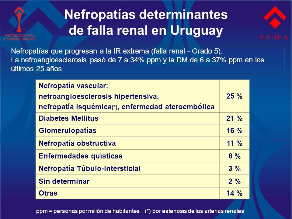 Nefropatías determinantes de falla renal en Uruguay S U H A Nefropatía vascular: nefroangioesclerosis hipertensiva, nefropatía isquémica (*), enfermed