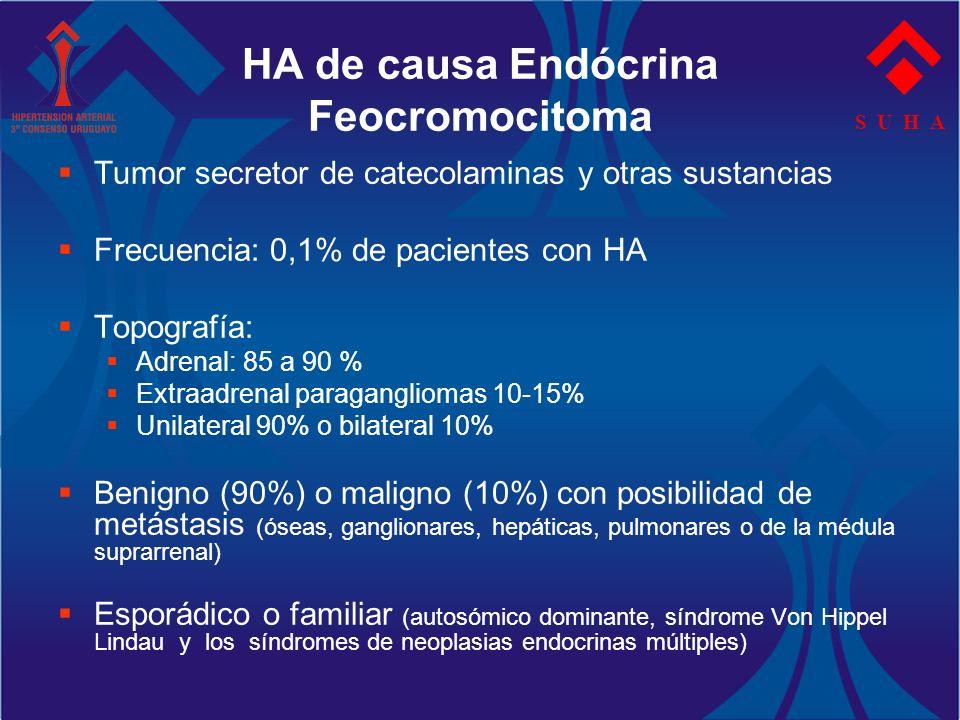S U H A HA de causa Endócrina Feocromocitoma Tumor secretor de catecolaminas y otras sustancias Frecuencia: 0,1% de pacientes con HA Topografía: Adren
