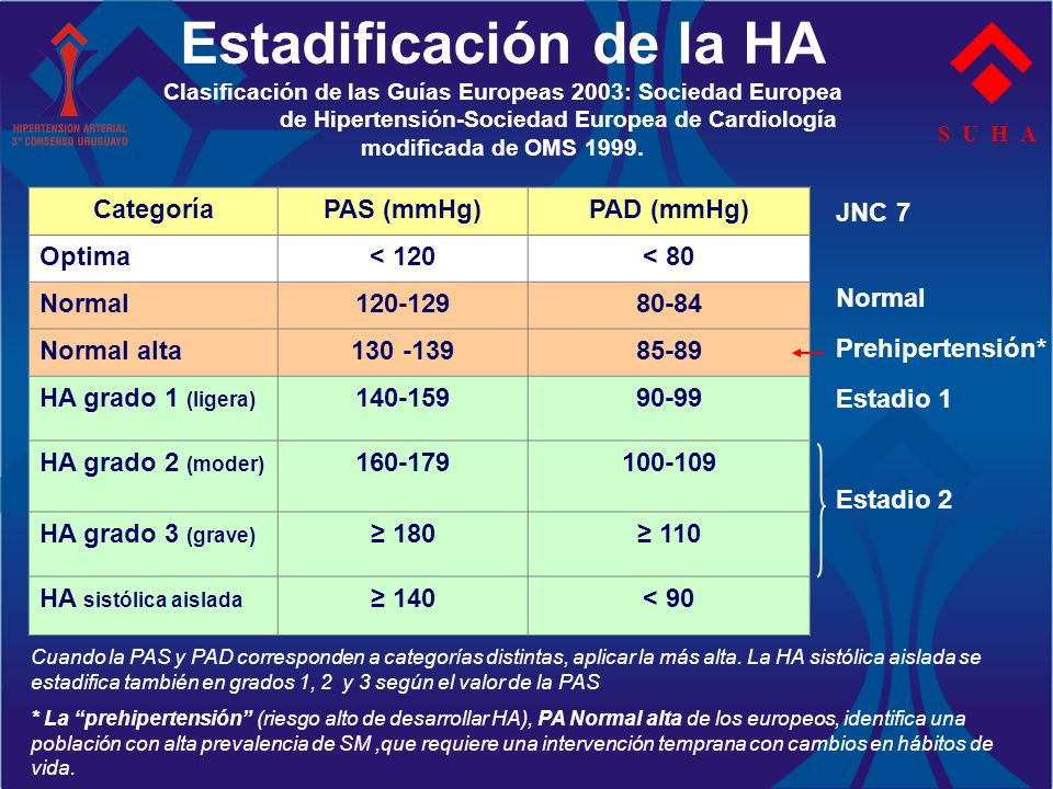 Estadificación de la HA Clasificación de las Guías Europeas 2003: Sociedad Europea de Hipertensión-Sociedad Europea de Cardiología modificada de OMS 1