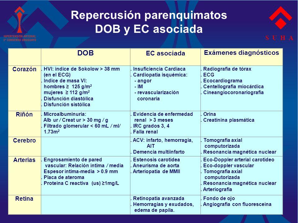 S U H A Repercusión parenquimatos DOB y EC asociada DOB EC asociada Exámenes diagnósticos Corazón. HVI: índice de Sokolow > 38 mm (en el ECG). Indice