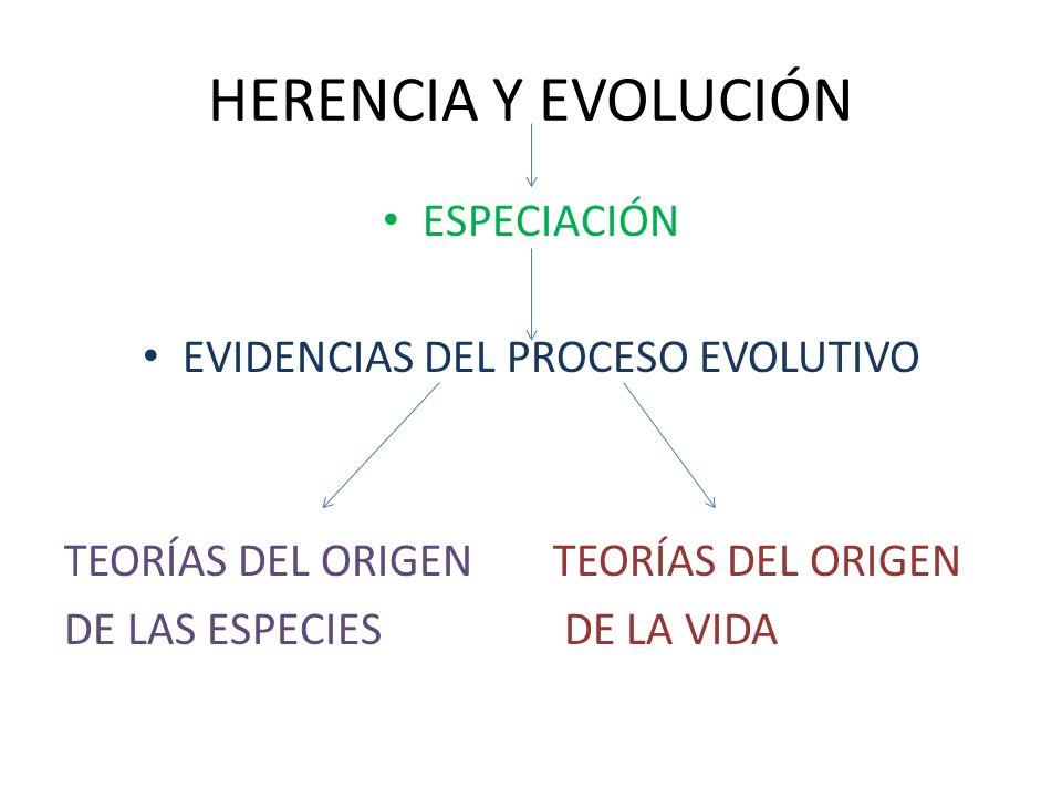 ESPECIACIÓN EVIDENCIAS DEL PROCESO EVOLUTIVO TEORÍAS DEL ORIGEN DE LAS ESPECIES DE LA VIDA