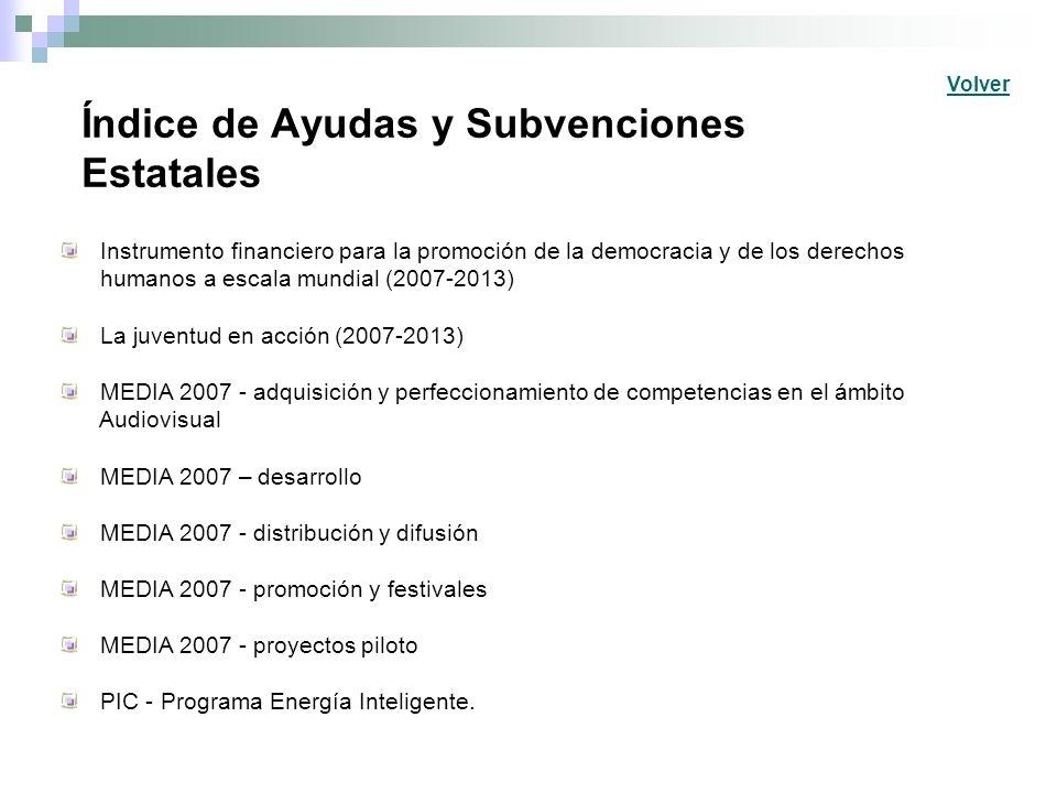 Índice de Ayudas y Subvenciones Estatales Instrumento financiero para la promoción de la democracia y de los derechos humanos a escala mundial (2007-2
