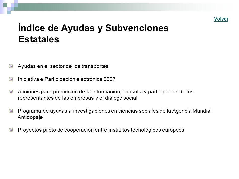 Índice de Ayudas y Subvenciones Estatales Ayudas en el sector de los transportes Iniciativa e Participación electrónica 2007 Acciones para promoción d