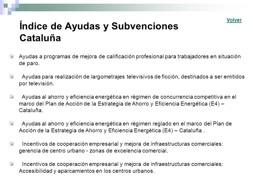 Índice de Ayudas y Subvenciones Cataluña Ayudas a programas de mejora de calificación profesional para trabajadores en situación de paro. Ayudas para