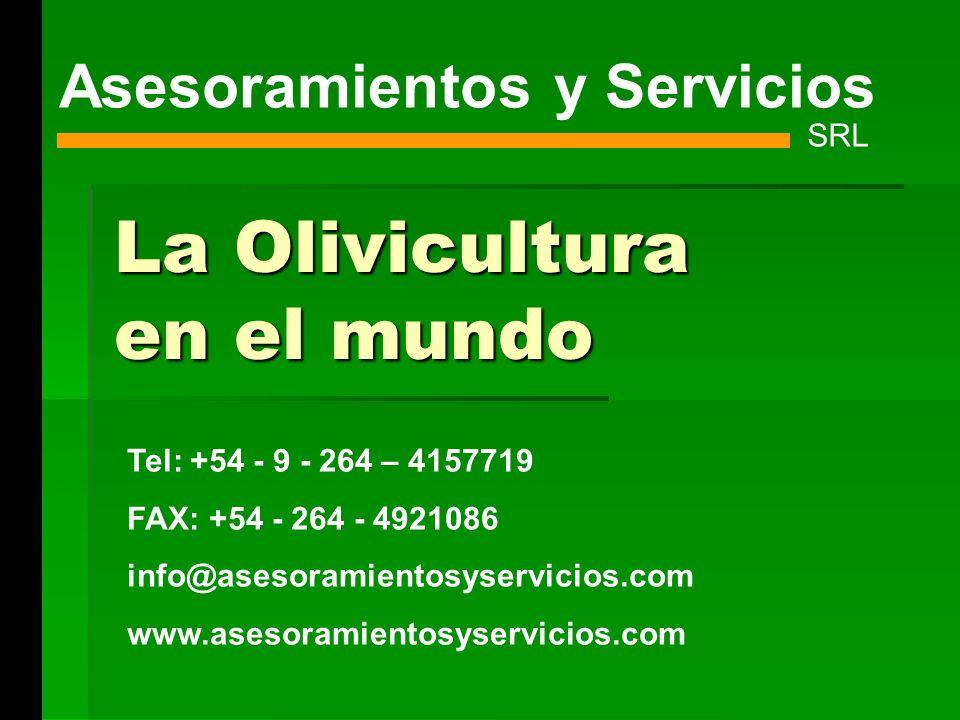 La Olivicultura en el mundo Asesoramientos y Servicios SRL Tel: +54 - 9 - 264 – 4157719 FAX: +54 - 264 - 4921086 info@asesoramientosyservicios.com www