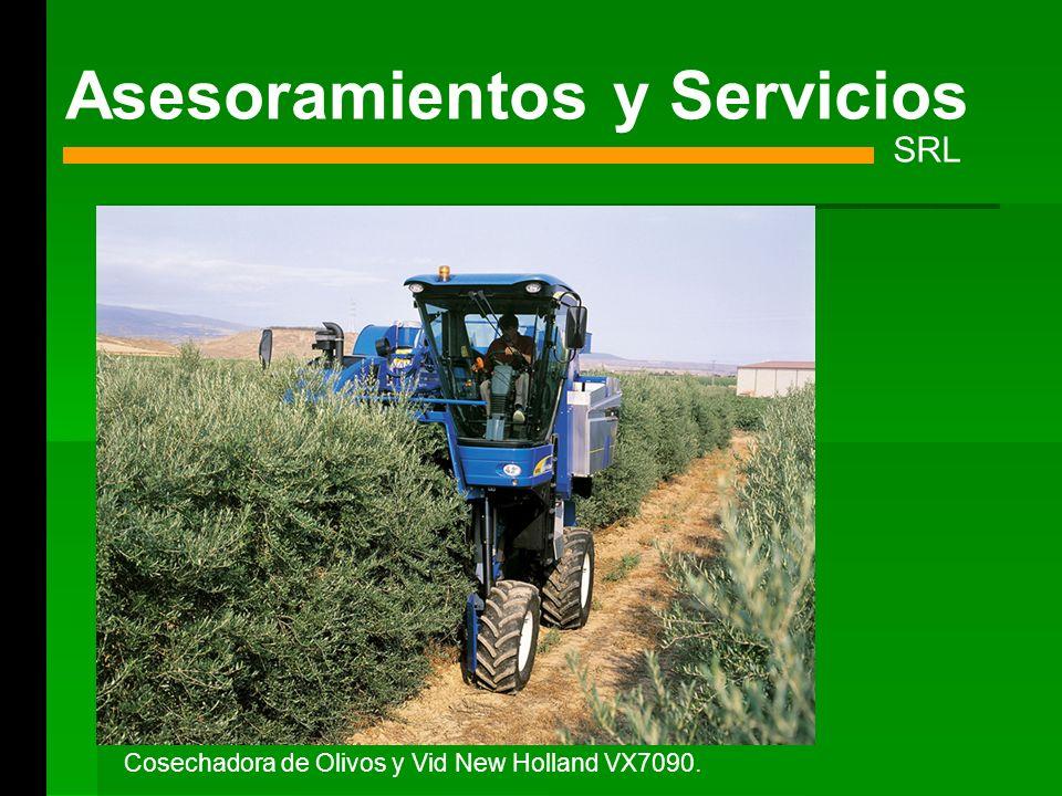 Asesoramientos y Servicios SRL Cosechadora de Olivos y Vid New Holland VX7090.