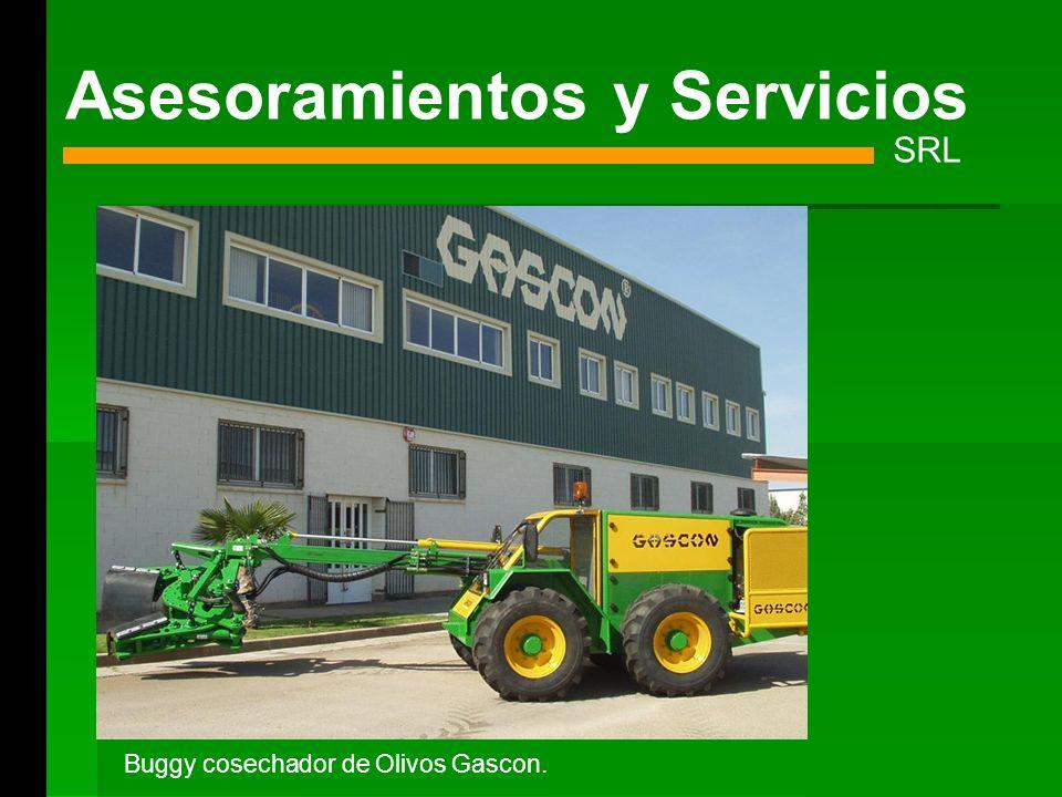 Asesoramientos y Servicios SRL Buggy cosechador de Olivos Gascon.