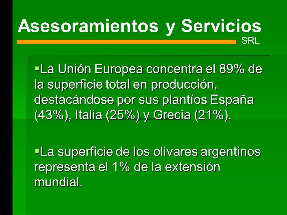 La Unión Europea concentra el 89% de la superficie total en producción, destacándose por sus plantíos España (43%), Italia (25%) y Grecia (21%). La Un