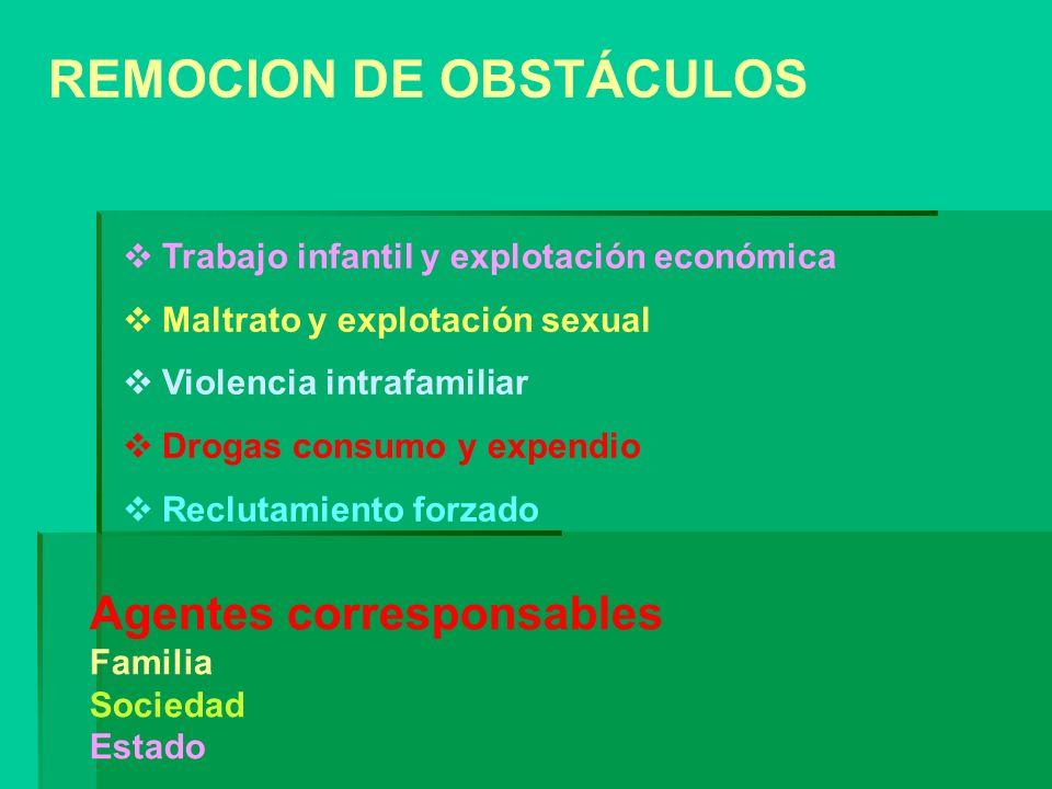 REMOCION DE OBSTÁCULOS Trabajo infantil y explotación económica Maltrato y explotación sexual Violencia intrafamiliar Drogas consumo y expendio Reclut