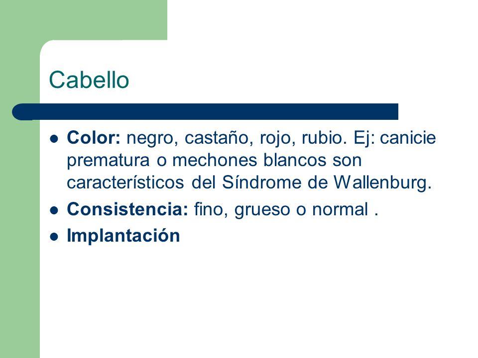 Cabello Color: negro, castaño, rojo, rubio. Ej: canicie prematura o mechones blancos son característicos del Síndrome de Wallenburg. Consistencia: fin