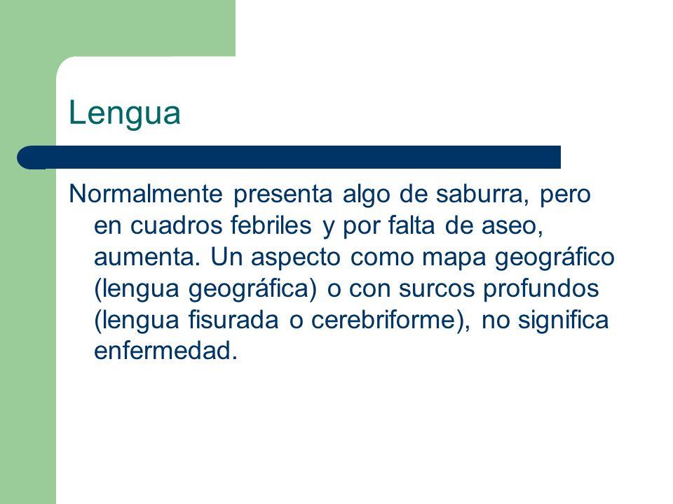 Lengua Normalmente presenta algo de saburra, pero en cuadros febriles y por falta de aseo, aumenta. Un aspecto como mapa geográfico (lengua geográfica