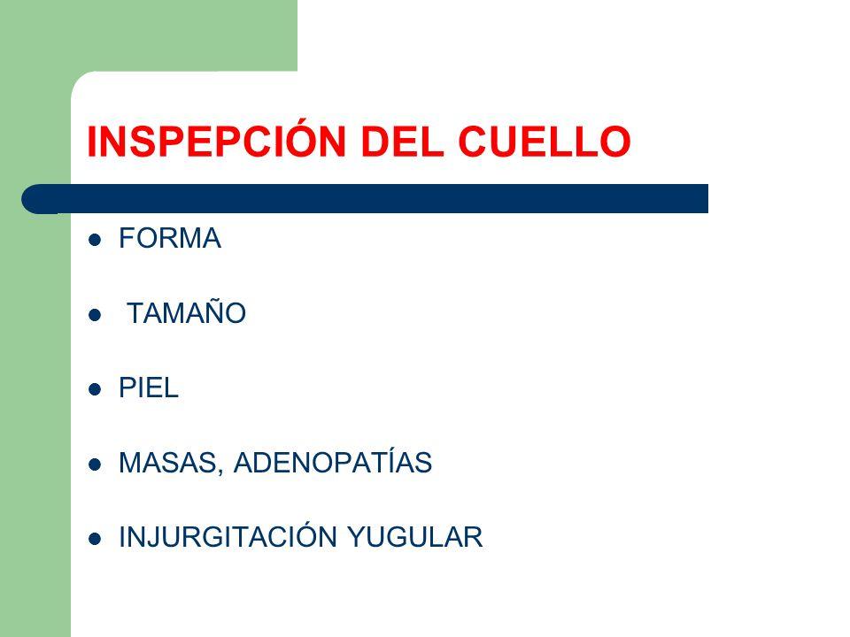 INSPEPCIÓN DEL CUELLO FORMA TAMAÑO PIEL MASAS, ADENOPATÍAS INJURGITACIÓN YUGULAR