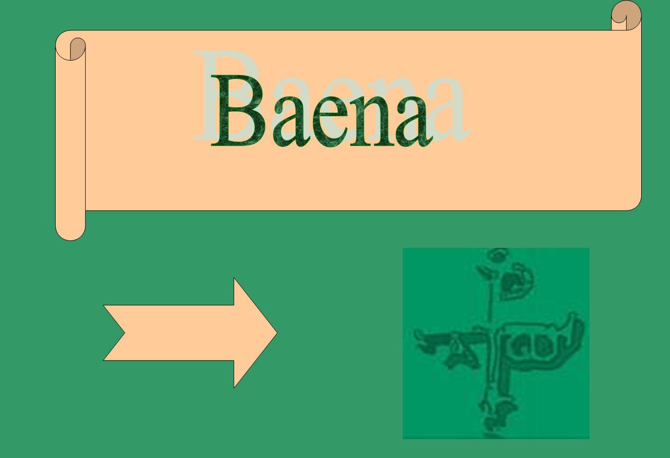 El municipio de Baena esta situado al suroeste de la provincia de Córdoba (España), entre la Campiña y la Sierra Subbética a 60km de la Capital, el río Guadajoz atraviesa el termino casi transversalmente de Suroeste a Oeste y el río Marbella que baña al propio núcleo urbano.