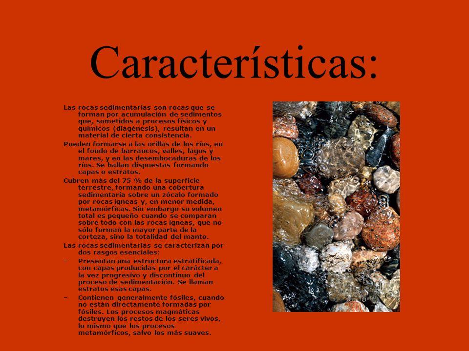 Caliza: Se usa el término de roca caliza para nombrar a aquella formada principalmente por carbonato de calcio.