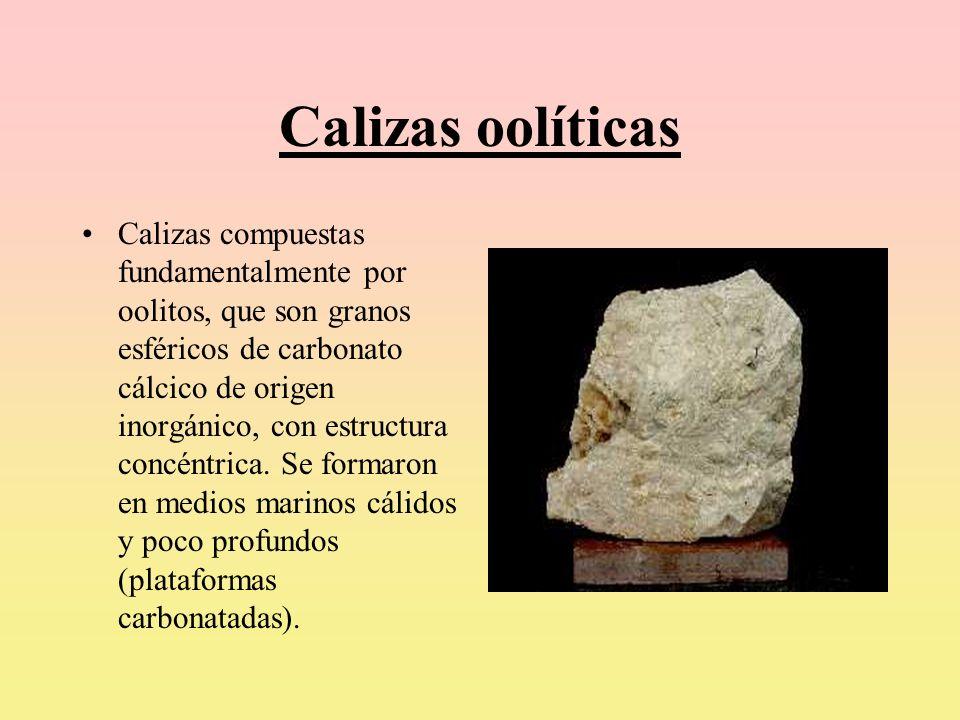 Calizas oolíticas Calizas compuestas fundamentalmente por oolitos, que son granos esféricos de carbonato cálcico de origen inorgánico, con estructura