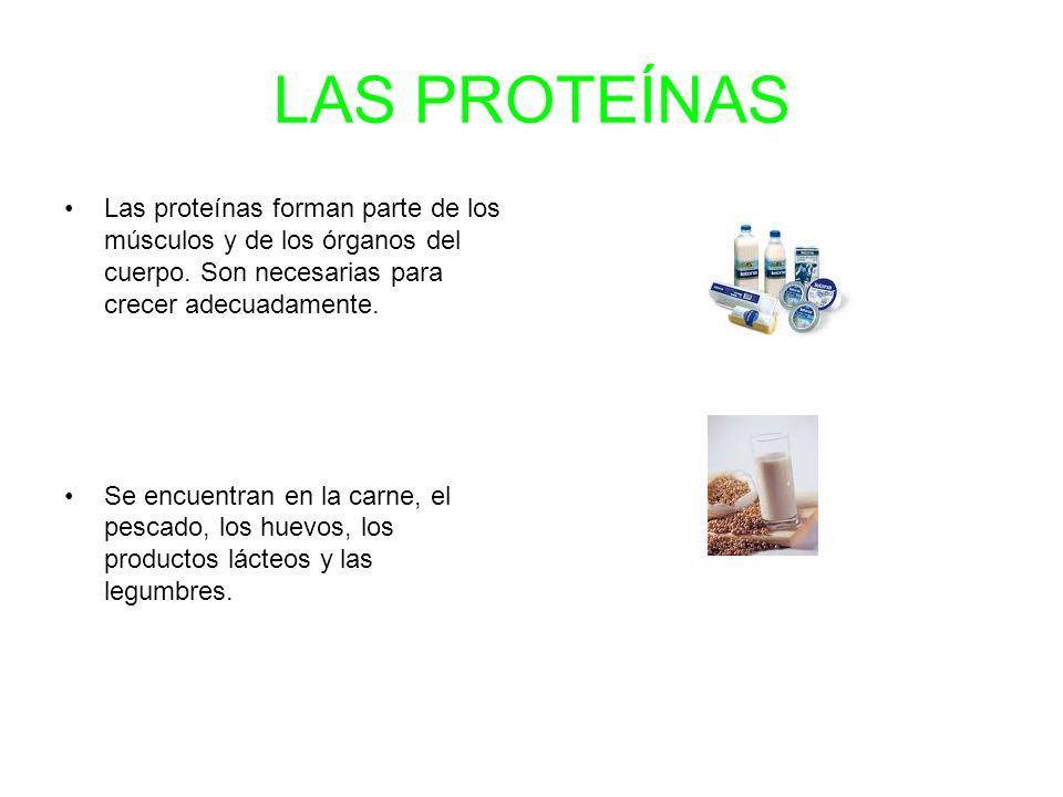 LAS PROTEÍNAS Las proteínas forman parte de los músculos y de los órganos del cuerpo. Son necesarias para crecer adecuadamente. Se encuentran en la ca