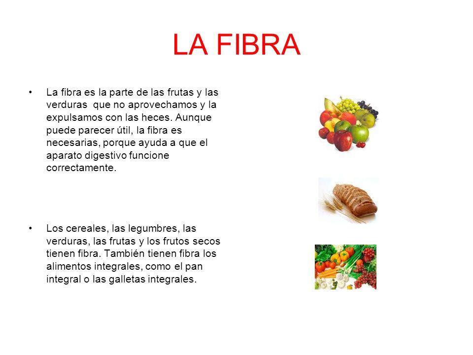 LA FIBRA La fibra es la parte de las frutas y las verduras que no aprovechamos y la expulsamos con las heces. Aunque puede parecer útil, la fibra es n