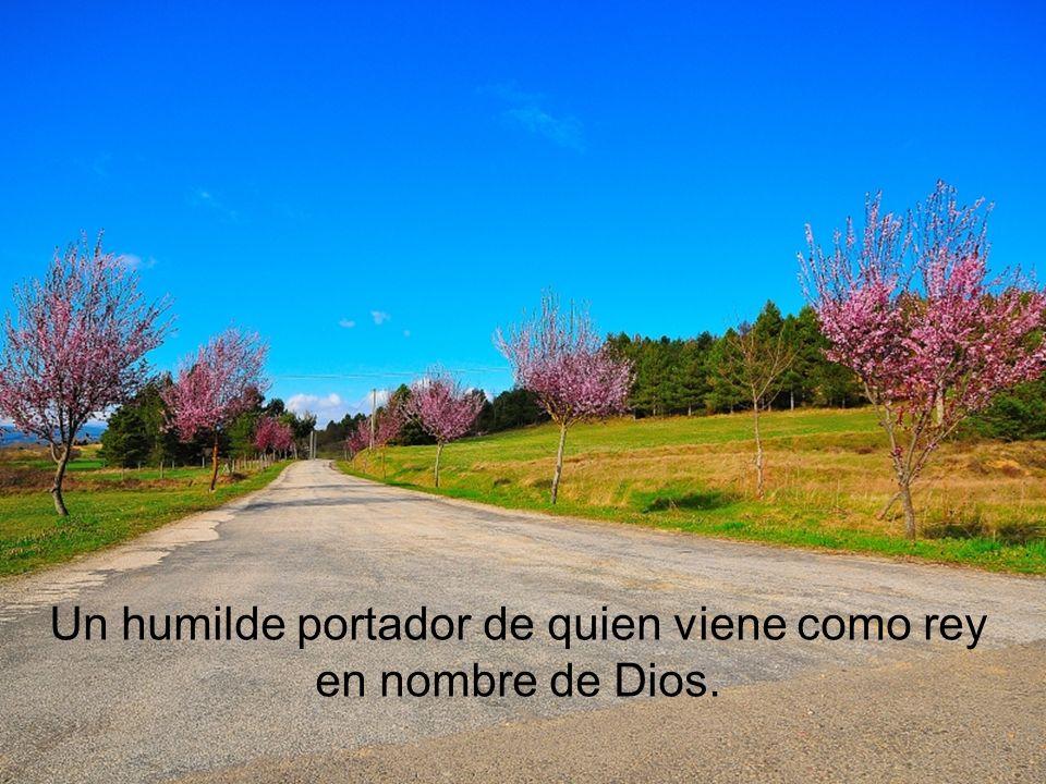 El envió previamente a dos discípulos para que trajeran un borrico, y a quien extrañado preguntase por qué, debían responder: el Señor lo necesita.