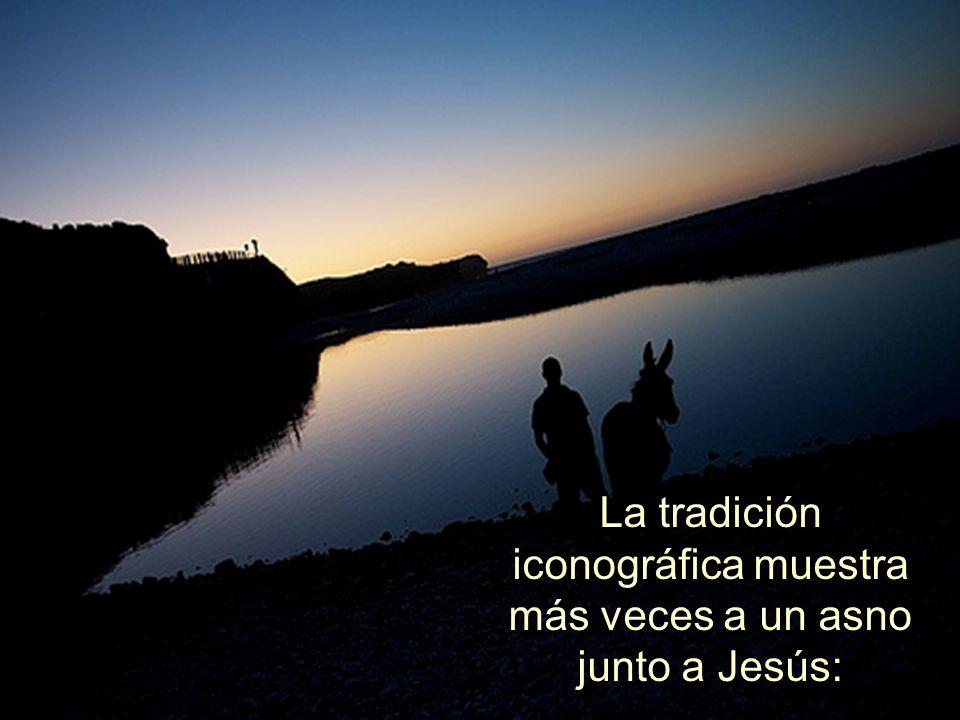 Un humilde portador de quien viene como rey en nombre de Dios.