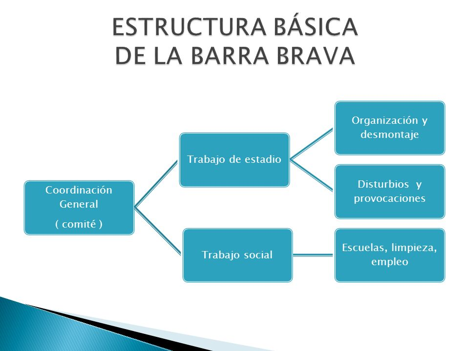 Coordinación General ( comité ) Trabajo de estadio Organización y desmontaje Disturbios y provocaciones Trabajo social Escuelas, limpieza, empleo
