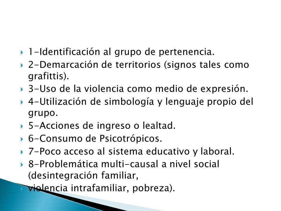 1-Identificación al grupo de pertenencia. 2-Demarcación de territorios (signos tales como grafittis). 3-Uso de la violencia como medio de expresión. 4
