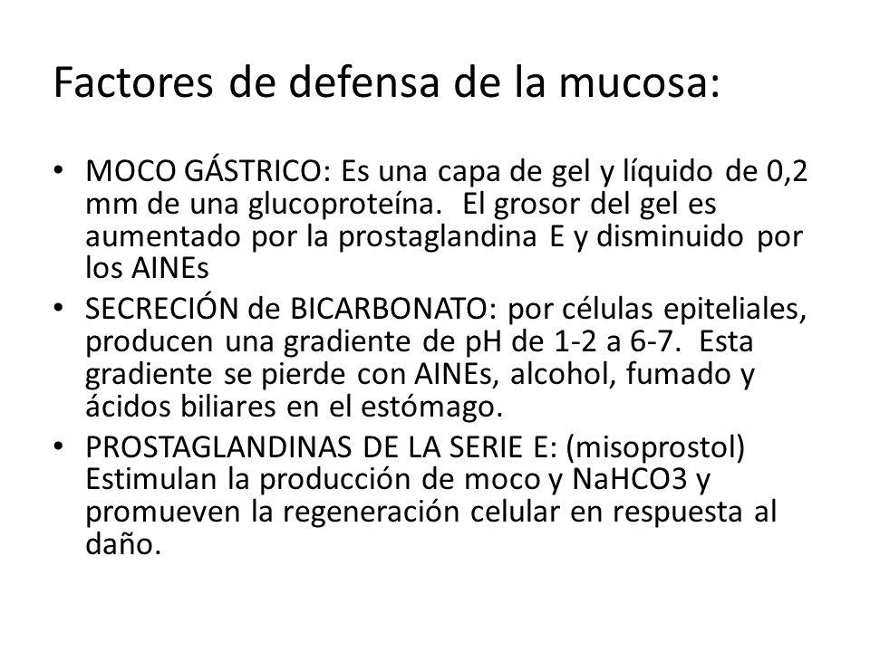 Factores de defensa de la mucosa: MOCO GÁSTRICO: Es una capa de gel y líquido de 0,2 mm de una glucoproteína. El grosor del gel es aumentado por la pr