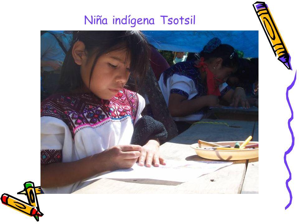 PROPOSITO ~ El estudiante aprenderá a leer, escribir, traducir, en su lengua materna.
