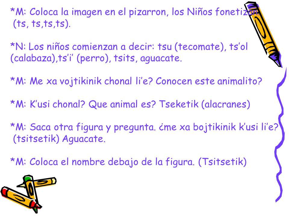 *M: Coloca la imagen en el pizarron, los Niños fonetizan. (ts, ts,ts,ts). *N: Los niños comienzan a decir: tsu (tecomate), tsol (calabaza),tsi (perro)