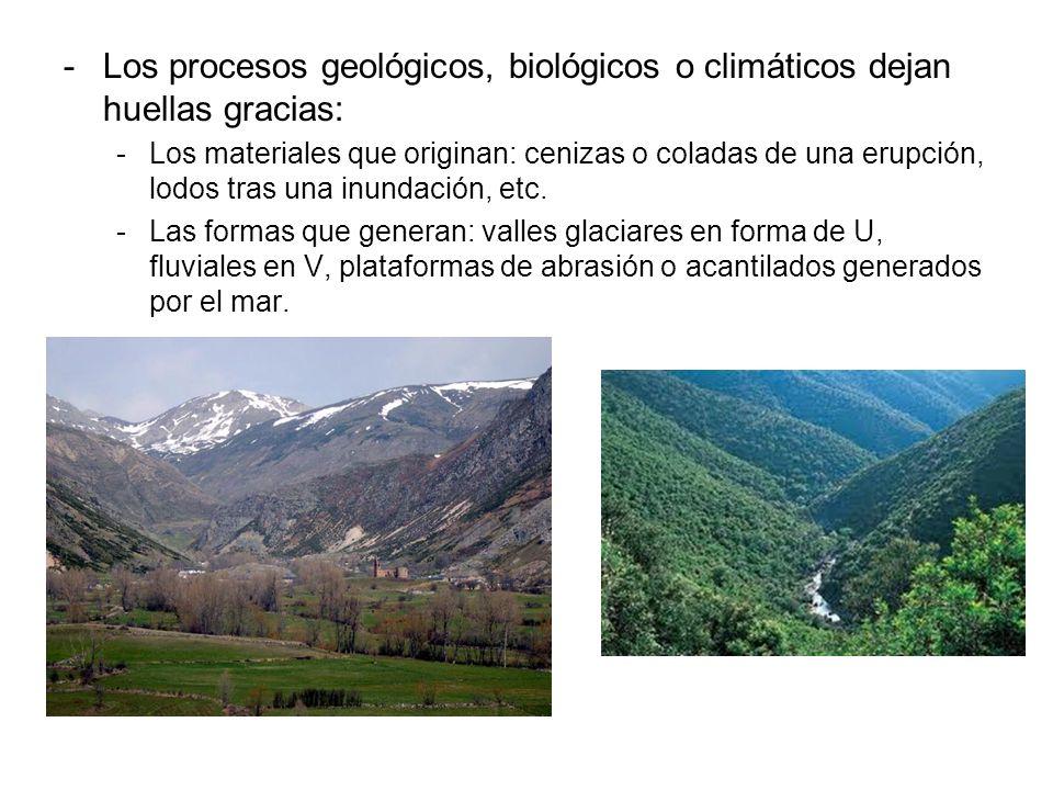 -Los procesos geológicos, biológicos o climáticos dejan huellas gracias: -Los materiales que originan: cenizas o coladas de una erupción, lodos tras u