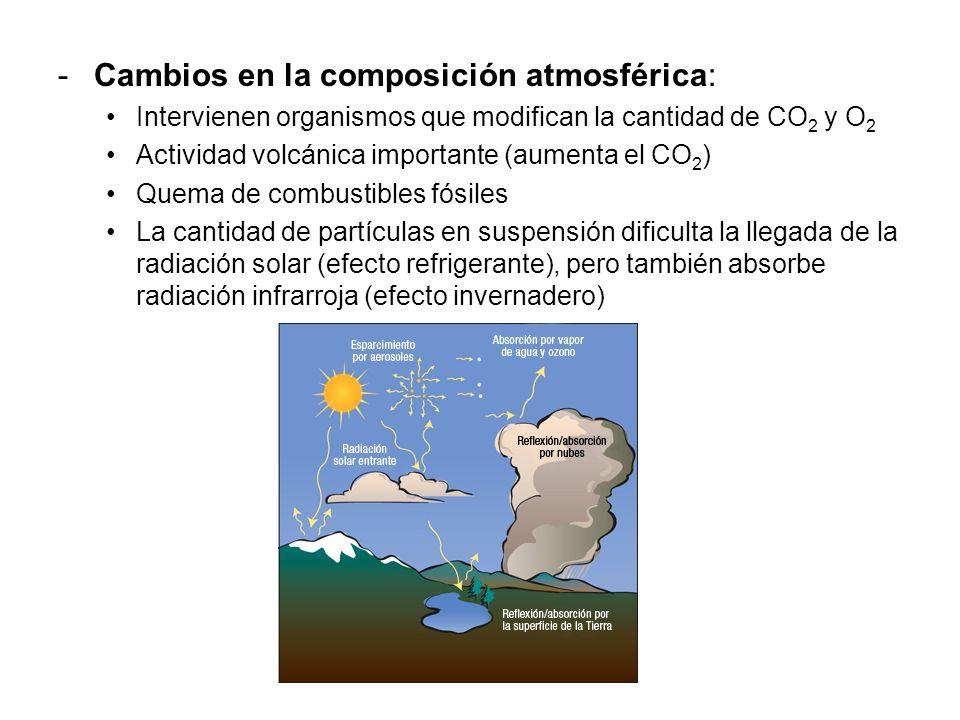-Cambios en la composición atmosférica: Intervienen organismos que modifican la cantidad de CO 2 y O 2 Actividad volcánica importante (aumenta el CO 2