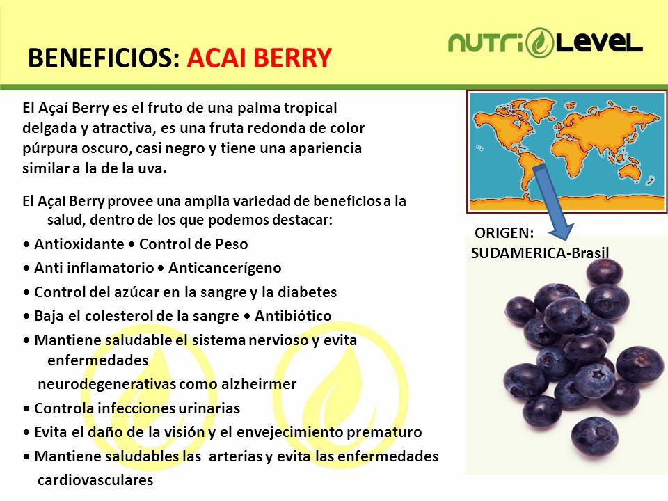 BENEFICIOS: ACAI BERRY El Açai Berry provee una amplia variedad de beneficios a la salud, dentro de los que podemos destacar: Antioxidante Control de