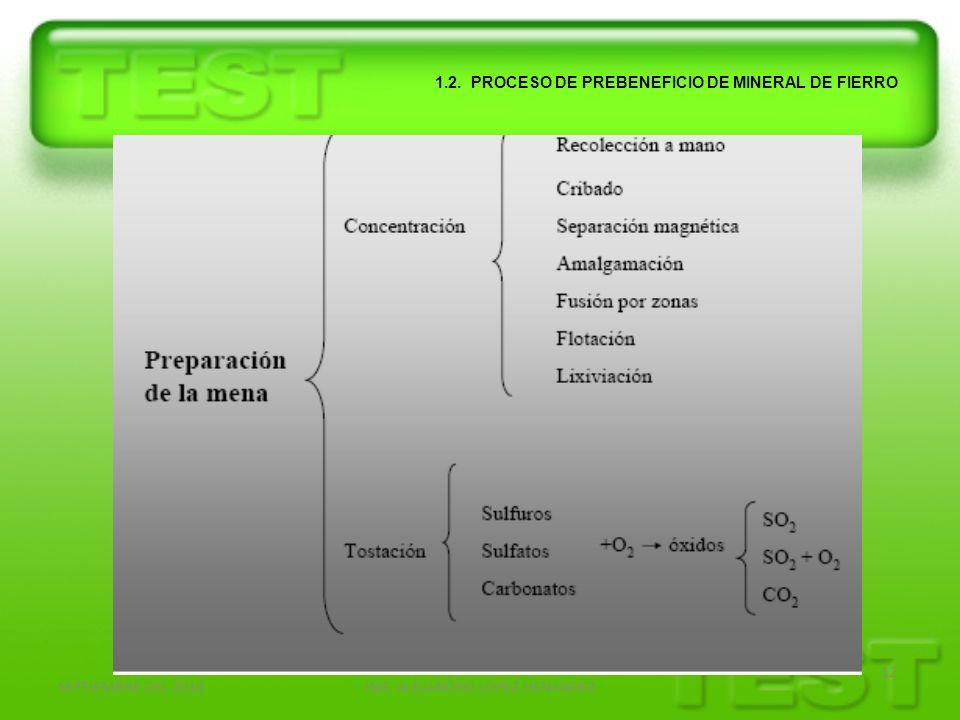 SEPTIEMBRE DEL 2010ING. ALEJANDRO LOPEZ HENANDEZ 12 1.2. PROCESO DE PREBENEFICIO DE MINERAL DE FIERRO