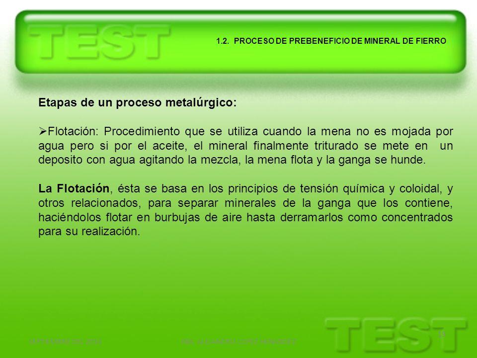 SEPTIEMBRE DEL 2010ING. ALEJANDRO LOPEZ HENANDEZ 19 1.2. PROCESO DE PREBENEFICIO DE MINERAL DE FIERRO Etapas de un proceso metalúrgico: Flotación: Pro
