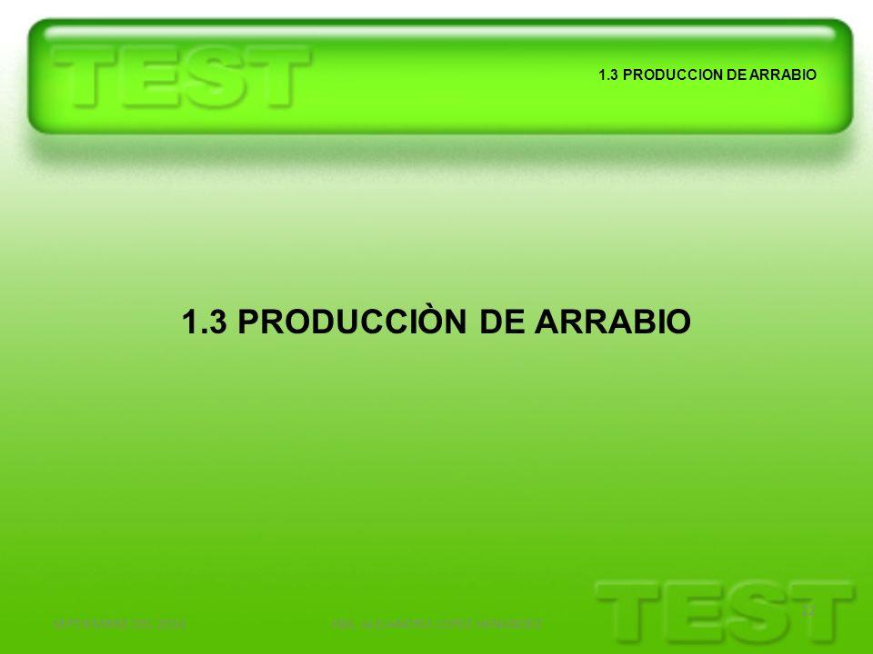 SEPTIEMBRE DEL 2010ING. ALEJANDRO LOPEZ HENANDEZ 22 1.3 PRODUCCION DE ARRABIO 1.3 PRODUCCIÒN DE ARRABIO