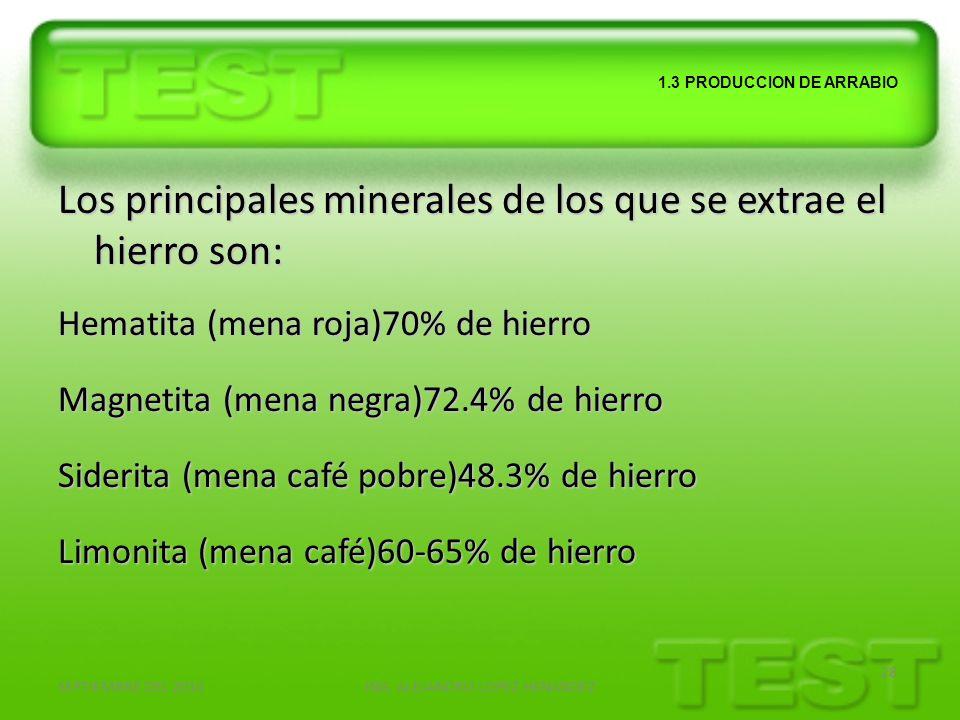 SEPTIEMBRE DEL 2010ING. ALEJANDRO LOPEZ HENANDEZ 28 1.3 PRODUCCION DE ARRABIO Los principales minerales de los que se extrae el hierro son: Hematita (