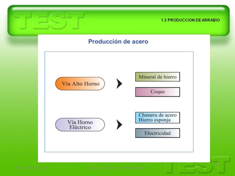 SEPTIEMBRE DEL 2010ING. ALEJANDRO LOPEZ HENANDEZ 29 1.3 PRODUCCION DE ARRABIO