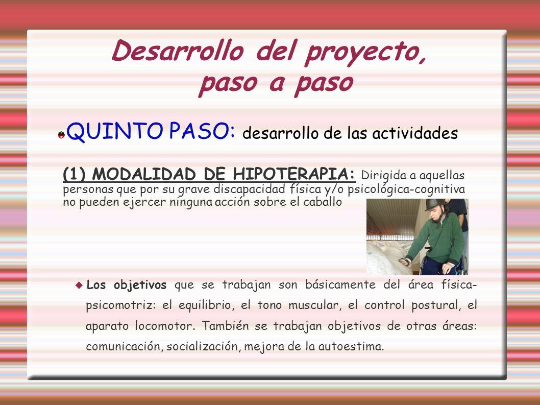 Desarrollo del proyecto, paso a paso QUINTO PASO: desarrollo de las actividades (1) MODALIDAD DE HIPOTERAPIA: Dirigida a aquellas personas que por su
