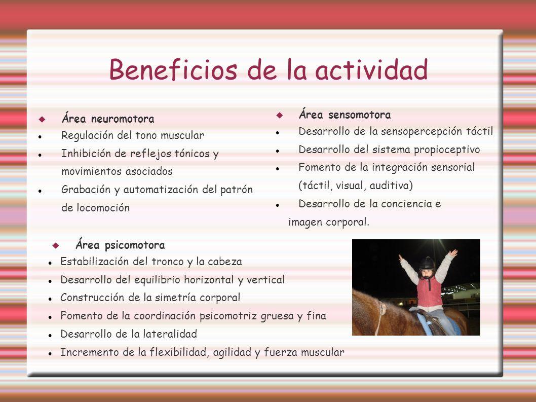 Beneficios de la actividad Área neuromotora Regulación del tono muscular Inhibición de reflejos tónicos y movimientos asociados Grabación y automatiza