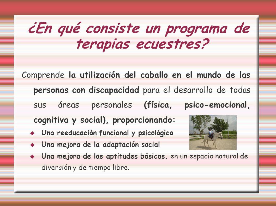 ¿En qué consiste un programa de terapias ecuestres? Comprende la utilización del caballo en el mundo de las personas con discapacidad para el desarrol