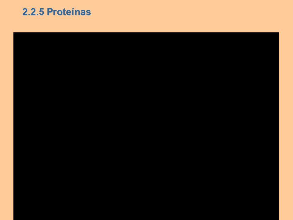 2.2.5 Proteínas