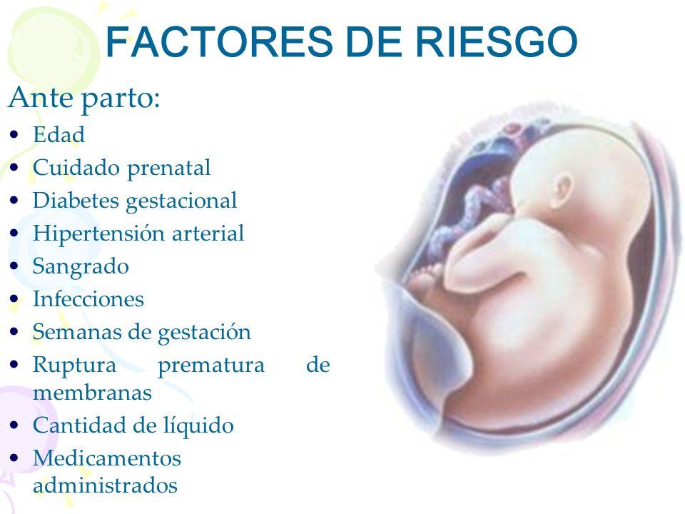 FACTORES DE RIESGO Ante parto: Edad Cuidado prenatal Diabetes gestacional Hipertensión arterial Sangrado Infecciones Semanas de gestación Ruptura prem