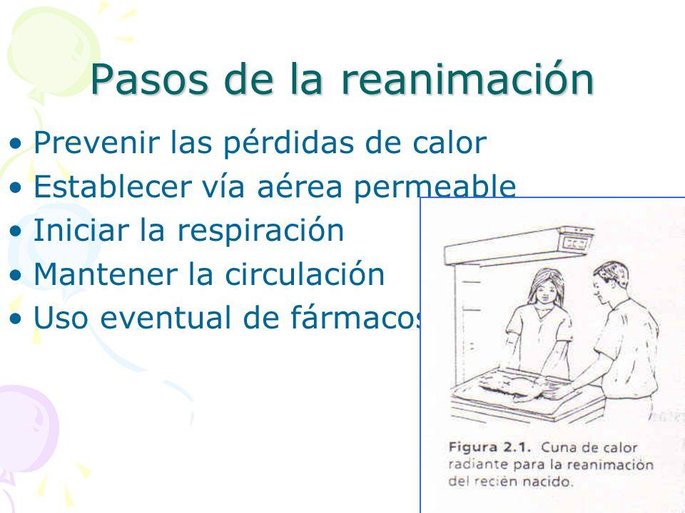 Pasos de la reanimación Prevenir las pérdidas de calor Establecer vía aérea permeable Iniciar la respiración Mantener la circulación Uso eventual de f