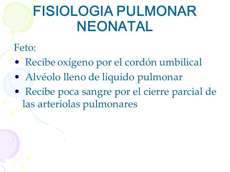 FISIOLOGIA PULMONAR NEONATAL Feto: Recibe oxígeno por el cordón umbilical Alvéolo lleno de líquido pulmonar Recibe poca sangre por el cierre parcial d