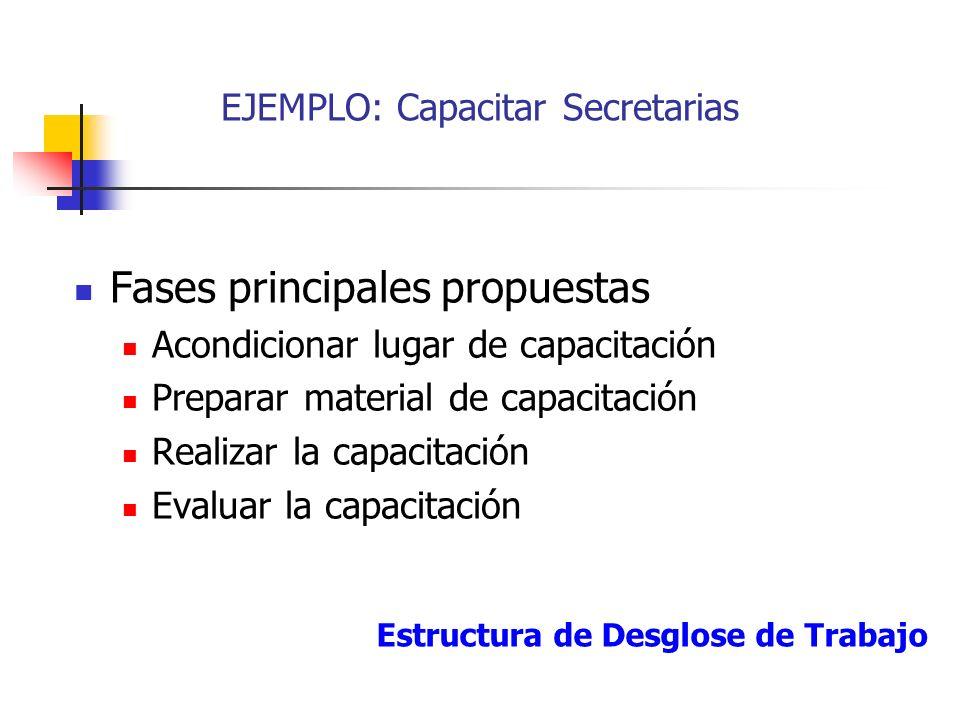Se recomienda seguir los siguientes pasos: 1. Divida el proyecto en fases principales 2. Fragmente cada fase en las actividades necesarias para llevar