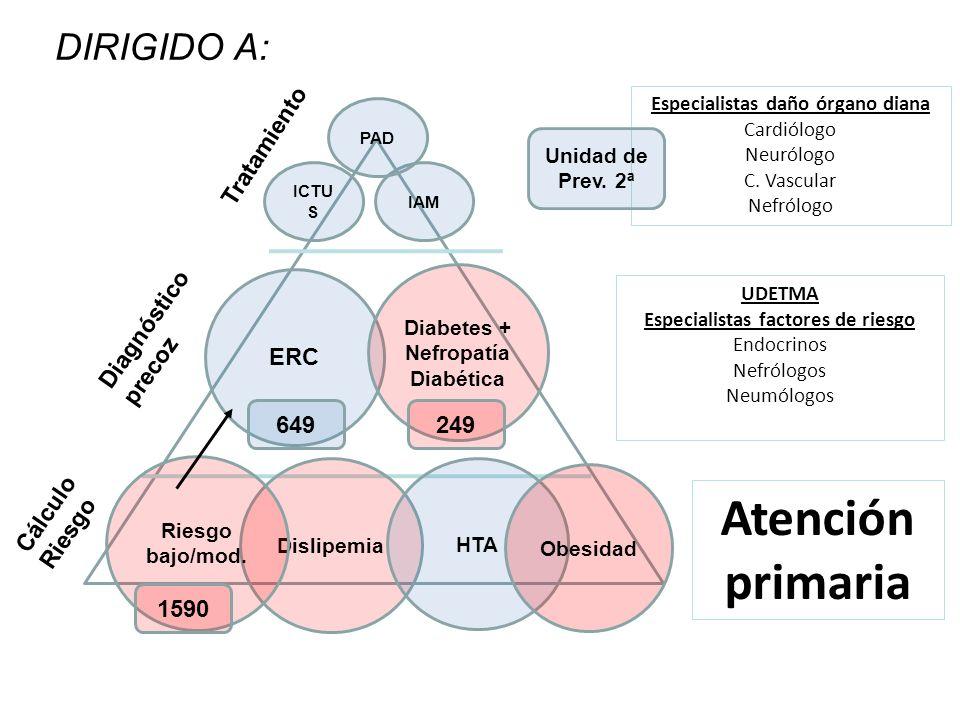 Atención primaria UDETMA Especialistas factores de riesgo Endocrinos Nefrólogos Neumólogos Especialistas daño órgano diana Cardiólogo Neurólogo C.