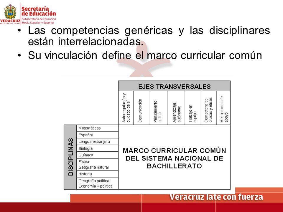 Las competencias genéricas y las disciplinares están interrelacionadas. Su vinculación define el marco curricular común