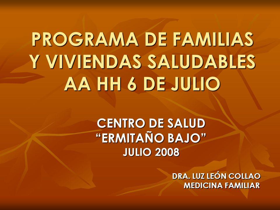 PROGRAMA DE FAMILIAS Y VIVIENDAS SALUDABLES AA HH 6 DE JULIO CENTRO DE SALUD ERMITAÑO BAJO JULIO 2008 DRA. LUZ LEÓN COLLAO MEDICINA FAMILIAR