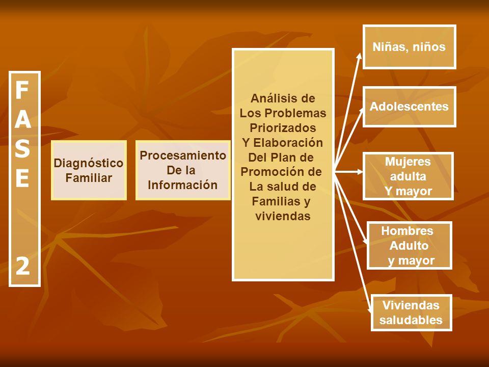FASE2FASE2 Diagnóstico Familiar Procesamiento De la Información Análisis de Los Problemas Priorizados Y Elaboración Del Plan de Promoción de La salud